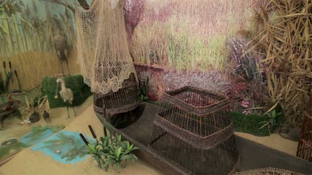Bihari múzeum - élet a vízivilágban