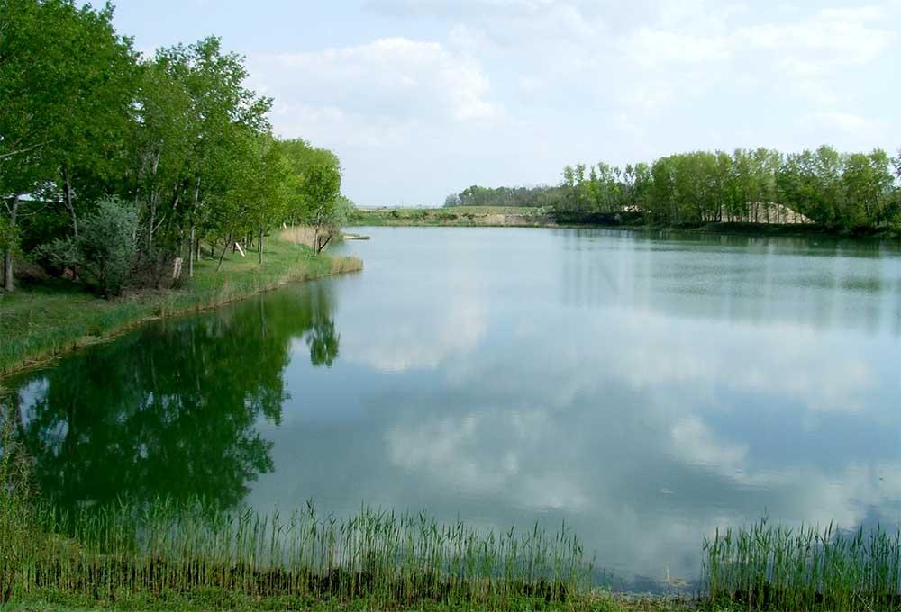 Pázsit tó - Pócsmegyer