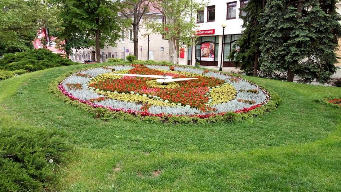 Virágóra - Székesfehérvár