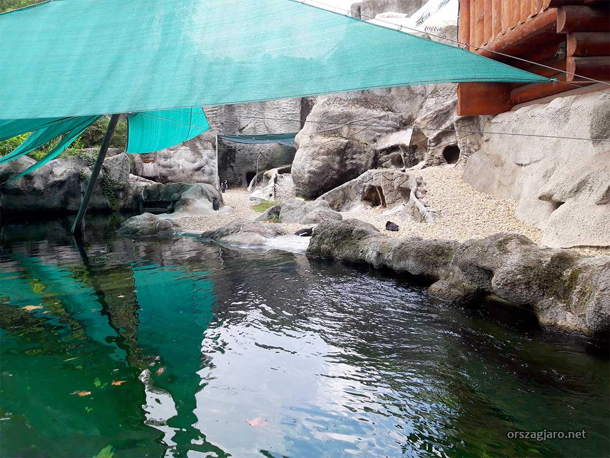 Fővárosi állatkert - Kisszikla