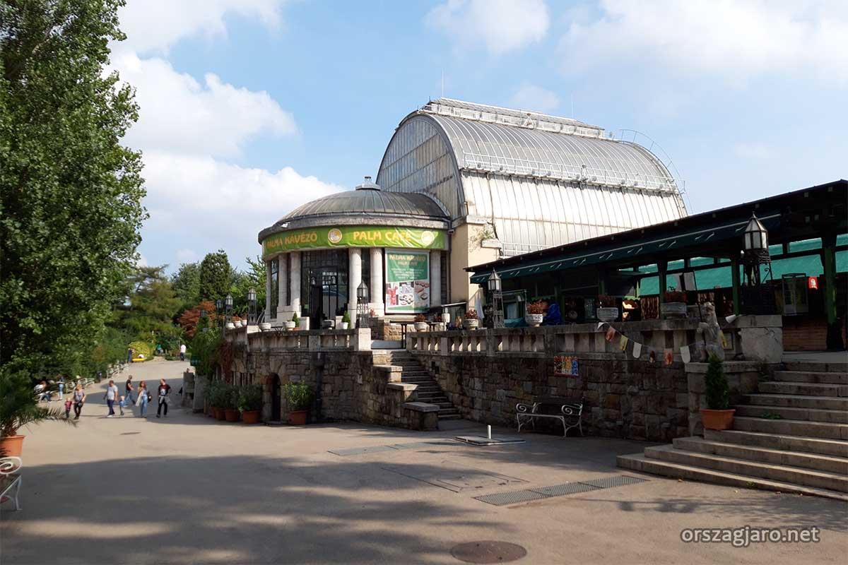 Pálmaház - Fővárosi állatkert